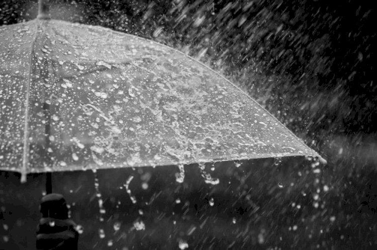 લાલપુરમાં બે કલાકમાં 4 ઇંચ,બીજા તાલુકામાં કેટલો વરસાદ.?