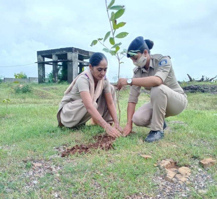 દેવભૂમિ દ્વારકા જિલ્લામાં પ્રકૃતિના પર્યાય, બે વર્ષમાં મહિલા PSIએ 1500 થી વધુ વૃક્ષોનું કર્યુ જતન