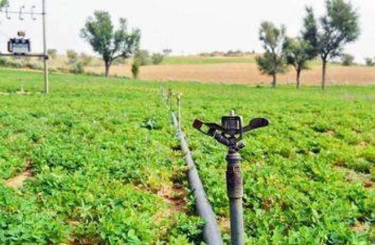 જિલ્લાના આટલા ખેડૂતોને પાકનું વળતર મળ્યુ નથી...