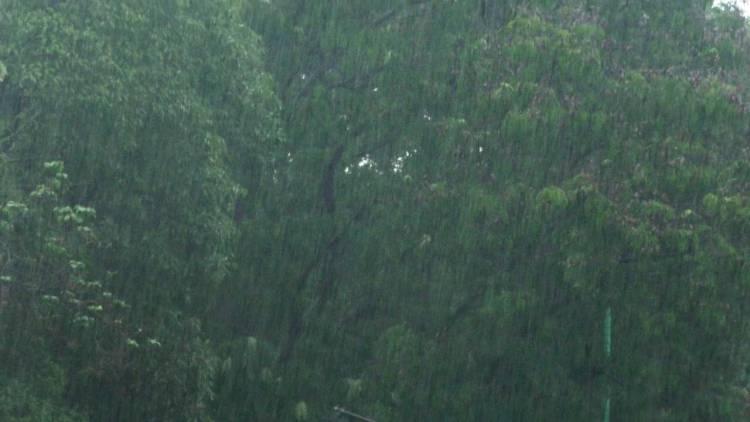 જામનગર જિલ્લામા ૭૦% જેટલા વરસાદથી લોકોને હાશકારો