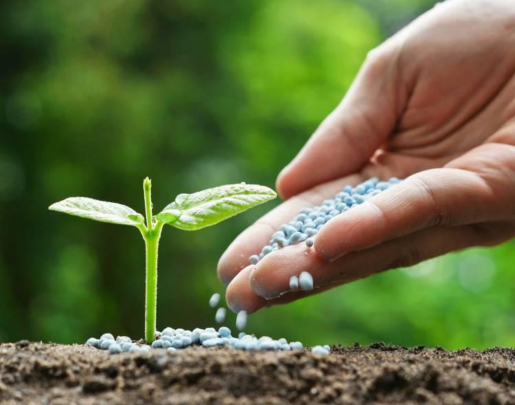 ખેડૂતો ધ્યાન આપે, સરકારે 6 પ્રકારના ખાતરની બ્રાંડ તૈયાર કરી