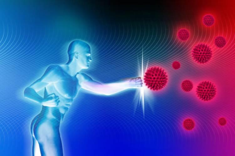 ઇમ્યુન(રોગપ્રતિકારકતા) સિસ્ટમની દુનિયા કેટલી તમારા હાથમાં?